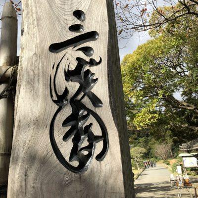 横浜本牧三渓園 2017年